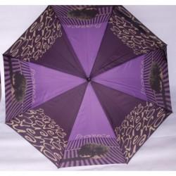 Parasol Doppler Art...